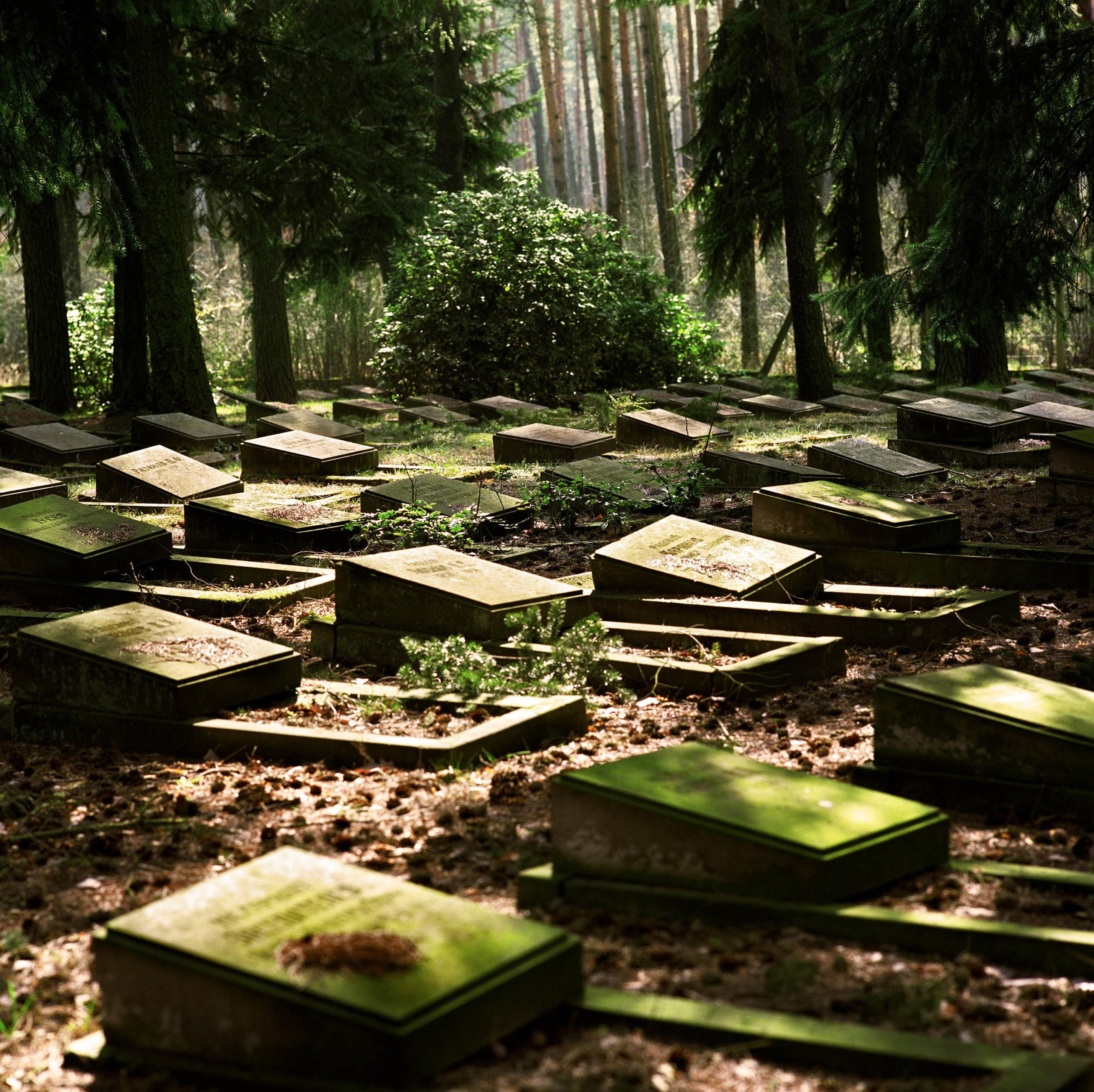 Germany. Soviet Army cemetery